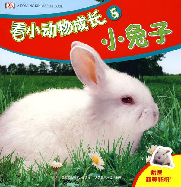 点击查看                          嗨,我是一只美丽的小兔子!